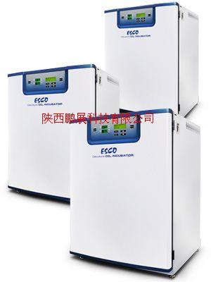 直热式二氧化碳培养箱CCL-170B-8