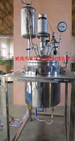 供应 北京定制GSH型10L实验室高压反应釜