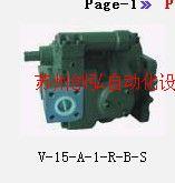 柱塞泵V-15-A-1-R-B-S