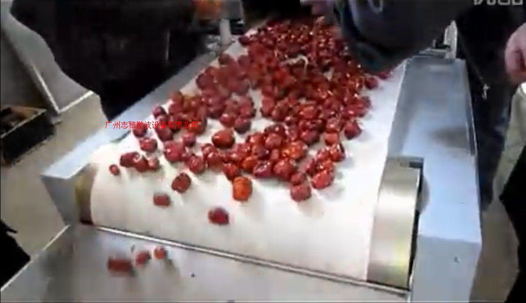红枣微波烘干杀菌机