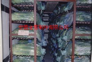 蚌埠冷库环境与果实的耐贮性关系