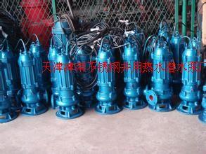 天津白钢潜水泵