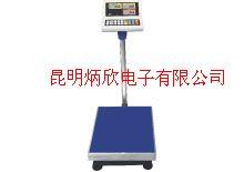 防水防腐不銹鋼電子臺秤