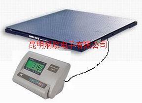 昆明電子平臺秤