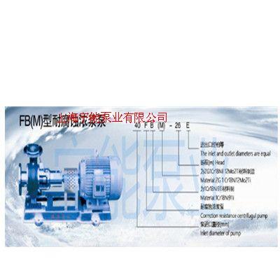 上海寧能FB(M)型耐腐蝕濃漿泵