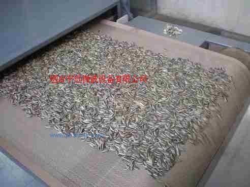 微波瓜子干燥機