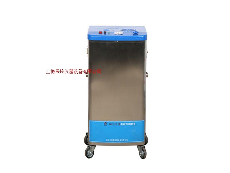 大量现货供应SHZ-95B型循环水真空泵