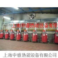 医疗设备消毒专用小型免检燃气锅炉上海中睿公司直销