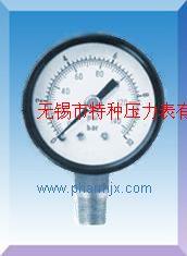 彈簧管壓力表Y-50/Y60/Y100/Y150