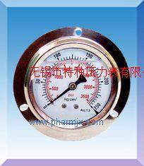 帶邊盤裝耐震壓力表YN-50ZQ/YN60ZQ/YN75ZQ/YN100ZQ/Y