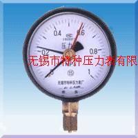定位压力表Y-60D/Y100D/Y150D