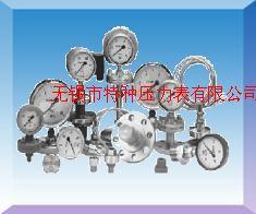径向带边不锈钢压力表Y-60B/TQ Y100B/TQ Y150B/TQ