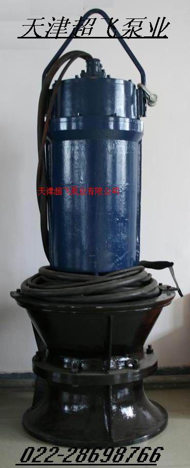 天津軸流泵,潛水軸流泵