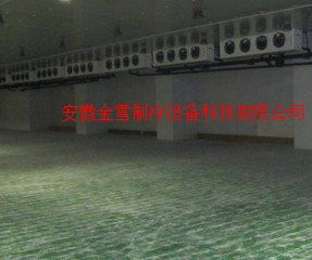 怀宁水果保鲜库建造