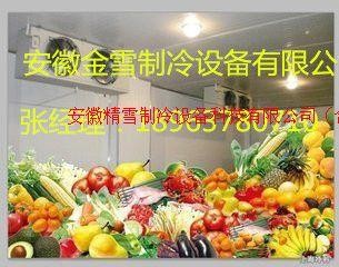 安庆水果保鲜库安装设计及维修