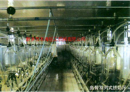 供應魚骨式雙列擠奶機