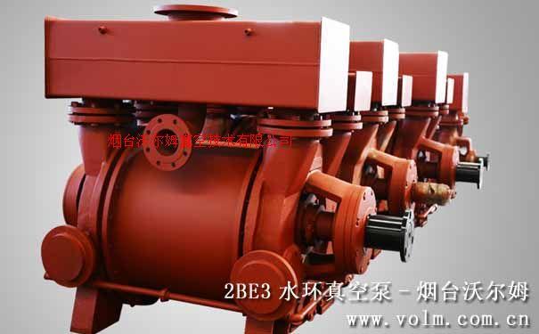 2BE3液環真空泵及壓縮機|沃爾姆水環式真空泵