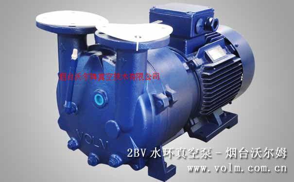 2BV水環式真空泵及壓縮機|沃爾姆液環真空泵