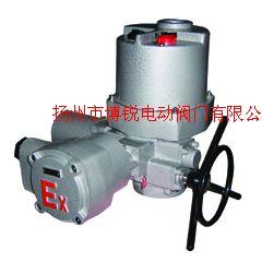 整体调节型电动执行机构,调节型电动头,整体型电动头