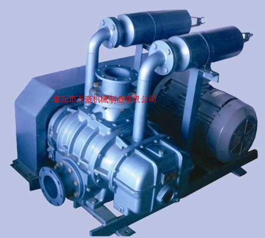 WHR50-300粉塵輸送除塵變頻萬豪羅茨風機
