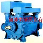 納西姆2BE3水環真空泵及配件