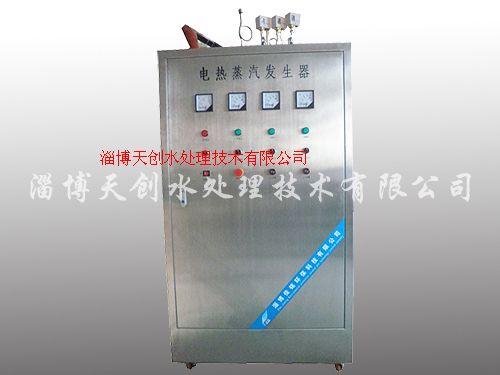 大型電加熱蒸汽發生爐
