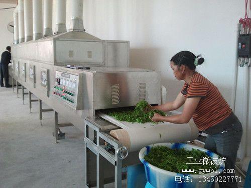 微波茶叶杀青干燥设备