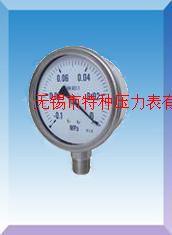 不锈钢压力表Y-60B/Y-75B/Y100B/Y150B